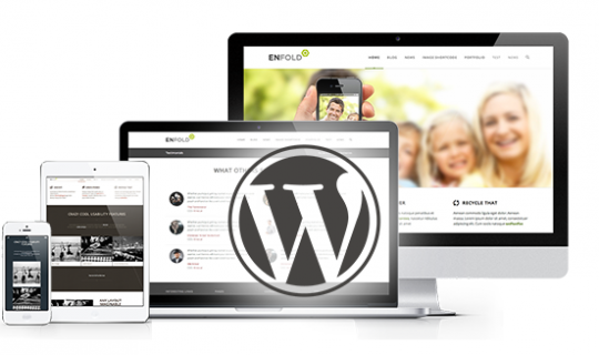 WordPress cms immobilier